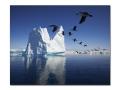 icebergs 22.jpg